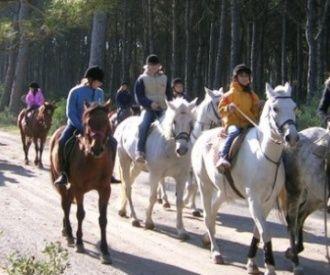 Excursión a caballo en el Baix Empordà