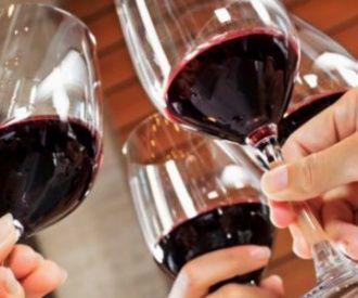 Cata: el universo del vino en tu propia casa